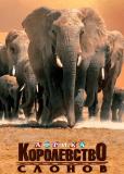 Африка – королевство слонов