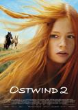 Восточный ветер 2