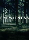Свидетели (сериал)