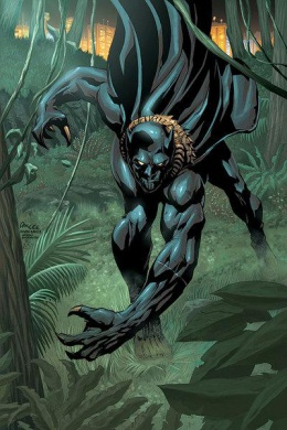 Т'Чалла / Черная пантера