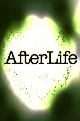Afterlife (сериал)