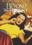 За лесом