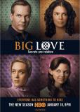 Большая любовь (сериал)