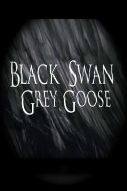 Черный лебедь, серый гусь
