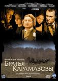 Братья Карамазовы (сериал)