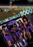 Тюрьма 3000 года