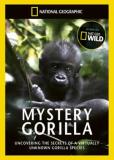 Тайна горилл