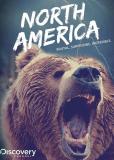 Discovery: Северная Америка (многосерийный)