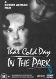 Холодным днем в парке