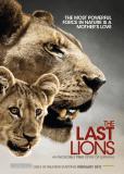 Последние львы