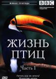 BBC: Жизнь птиц (сериал)