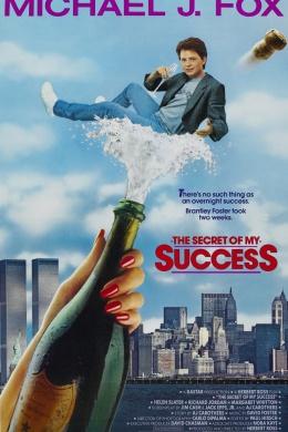 Секрет моего успеха