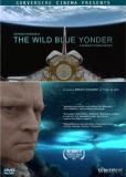 Далекая синяя высь