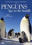 Пингвины. Шпион в стае (многосерийный)