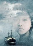 Настоящий север