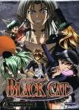 Черный кот (сериал)