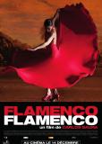 Фламенко, фламенко