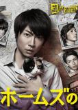 Рассуждения Холмс - трехцветной кошки (сериал)