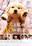10 обещаний моей собаке