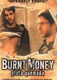 Паленые деньги