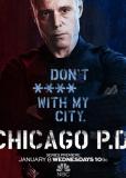 Полиция Чикаго (сериал)