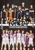 Волейбол!!: третий сезон (сериал)