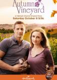 Осень в винограднике