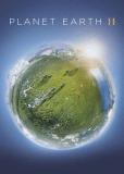 BBC: Планета Земля 2 (многосерийный)