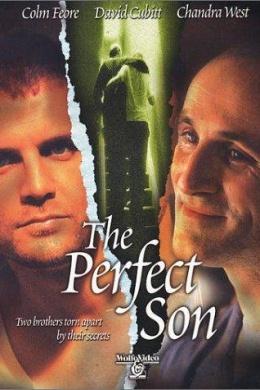 Идеальный сын