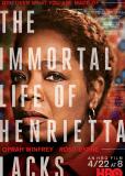 Бессмертная жизнь Генриетты Лакс