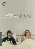 Сцены из супружеской жизни (многосерийный)