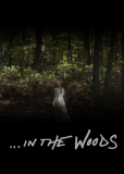 В лесах (сериал)