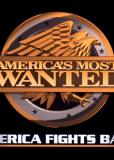 Их разыскивают в Америке (сериал)