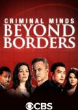 Мыслить как преступник: За границей (сериал)