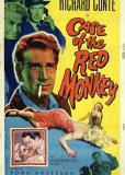 Маленькая красная обезьяна