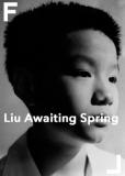 Лю в ожидании весны