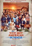 Жаркое американское лето: 10 лет спустя (сериал)