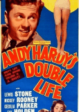 Двойная жизнь Энди Харди