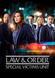 Закон и порядок. Специальный корпус (сериал)