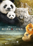 Рожденные в Китае