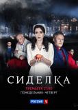 Сиделка (сериал)