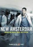 Новый Амстердам (сериал)