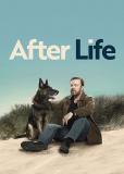 Жизнь после смерти (сериал)