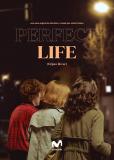 Идеальная жизнь (сериал)