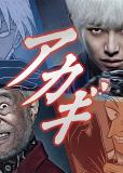 Акаги (сериал)