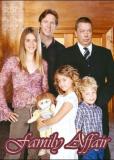 Family Affair (сериал)