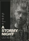 Бурная ночь