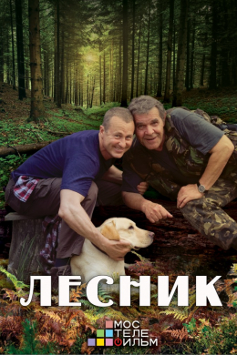 Лесник (сериал)
