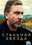 Стальная звезда (сериал)