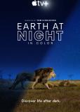 Земля ночью в цвете (сериал)